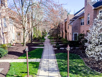 48-RAMPART-DR-CHESTERBROOK- (2)