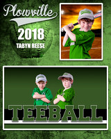 REESE-TABYN-MM-TBALL-GREEN-PLOWVILLE-2018