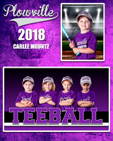 MOUTZ-CARLEE-MM-TBALL-PURPLE-PLOWVILLE-2018