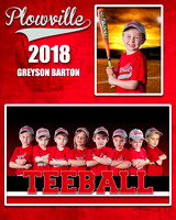 BARTON-GRAYSON-MM-TEEBALL-RED-PLOWVILLE-2018